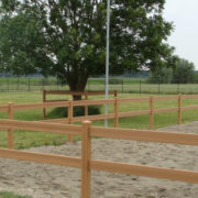 Kunststoff Zaun Holzoptik Reitplatz