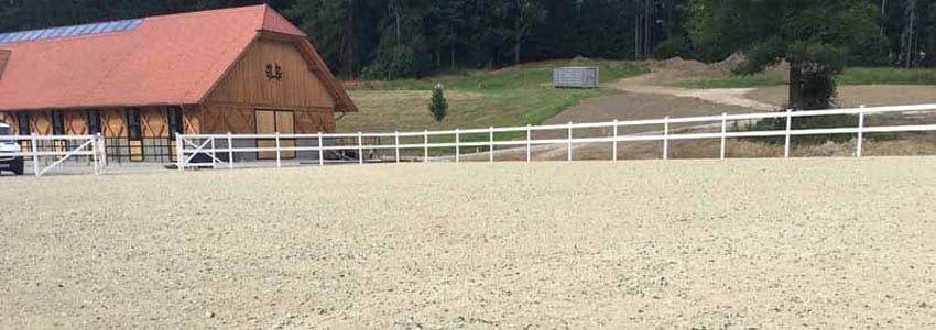 Pro Equus Referenzen